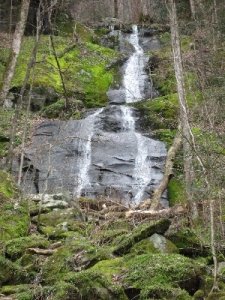 Fern Branch Falls on Porters Trail